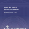 City Wide Risk Assessment Report